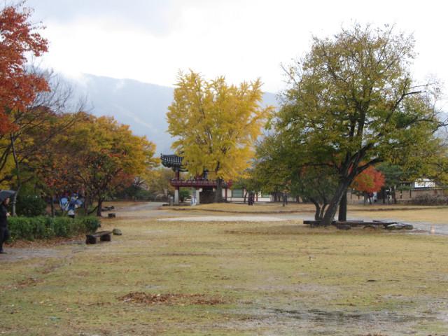 korea-southern-8910