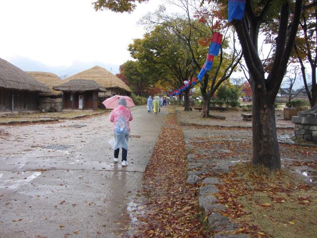 korea-southern-8915