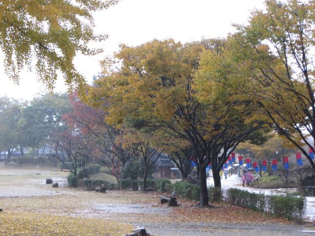 korea-southern-8939
