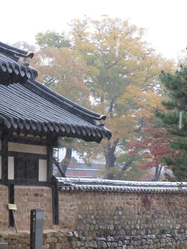 korea-southern-8941
