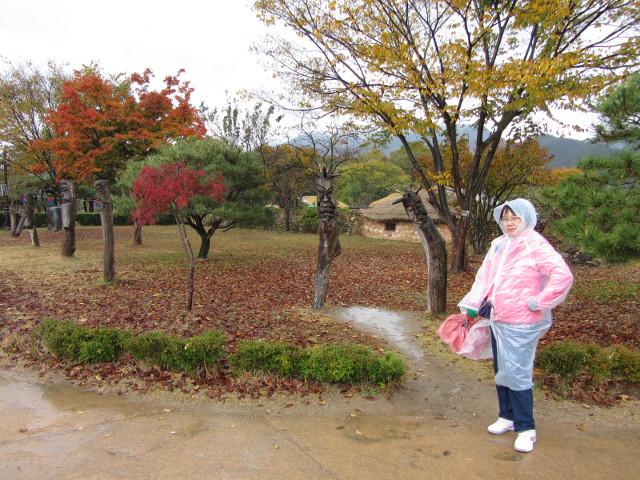 korea-southern-8959
