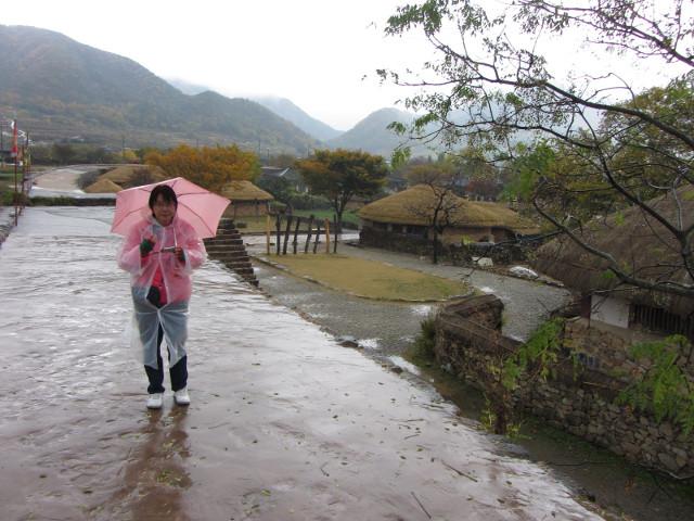 korea-southern-8978