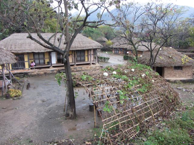korea-southern-9017
