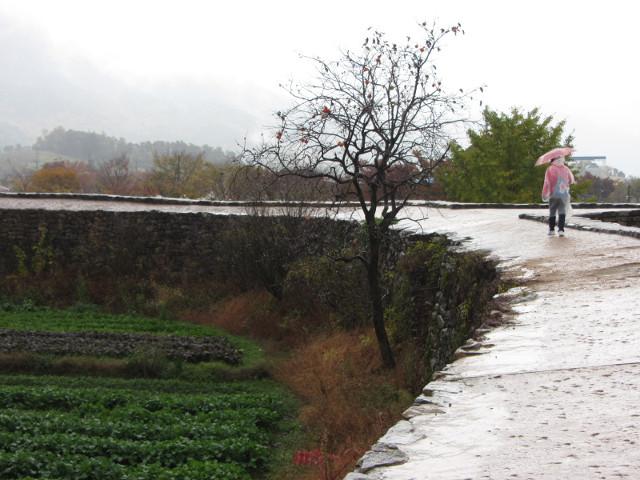 korea-southern-9042