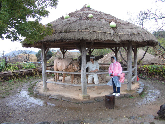 korea-southern-9129