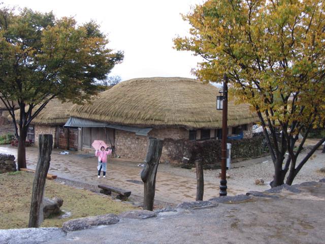 korea-southern-9133