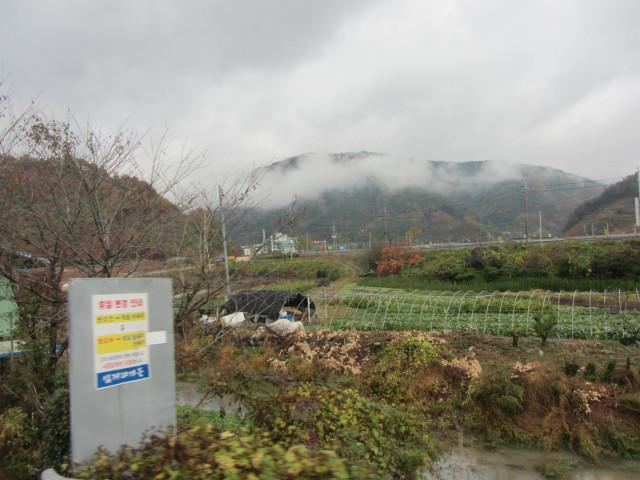 korea-southern-9183