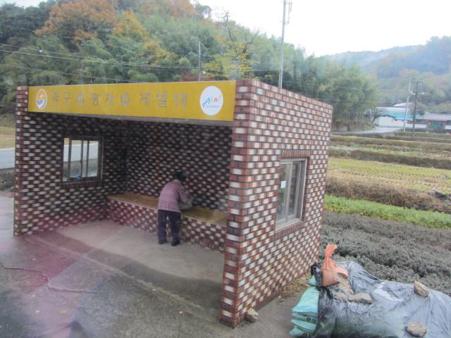 korea-southern-9189