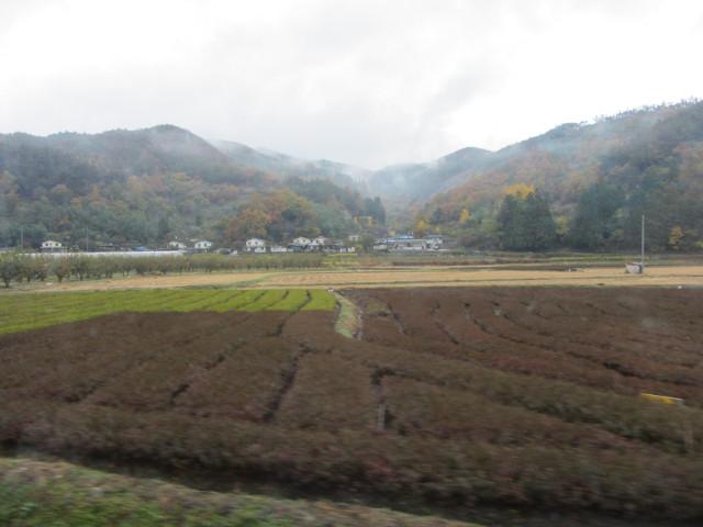 korea-southern-9192