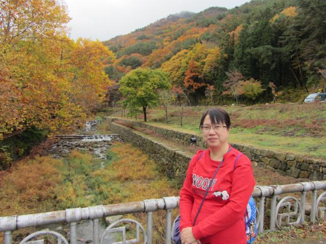 korea-southern-9200