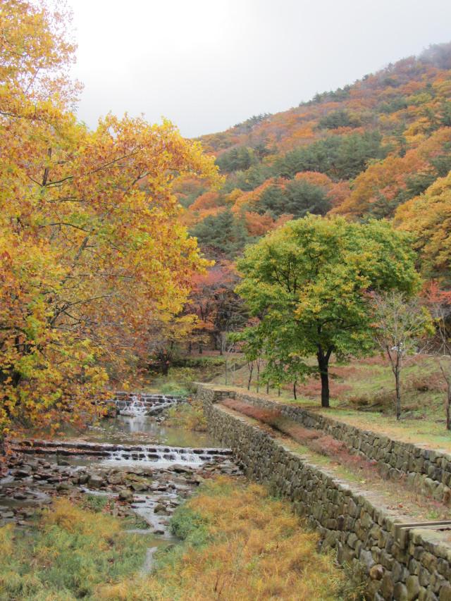 korea-southern-9204