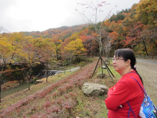 korea-southern-9206
