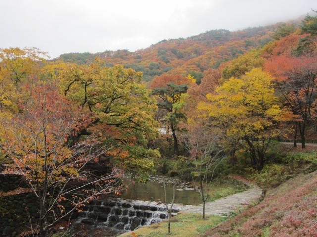 korea-southern-9210