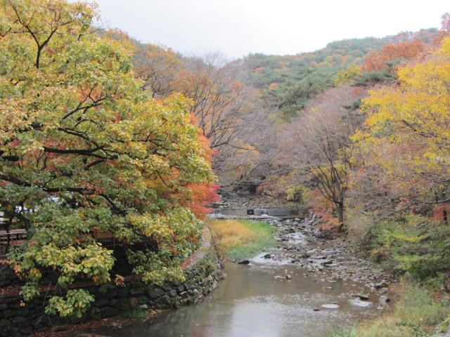 korea-southern-9211