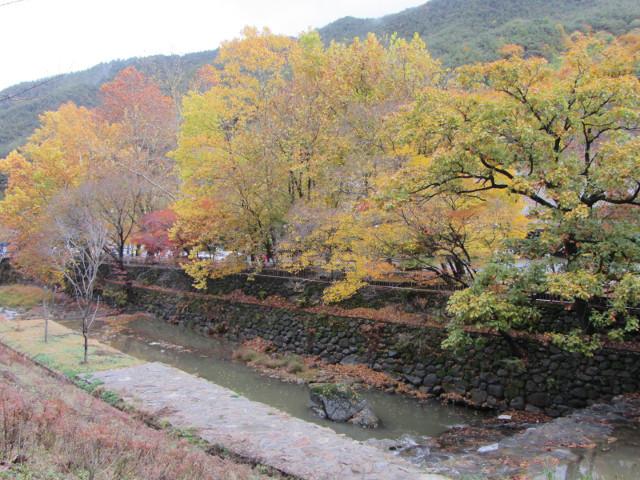 korea-southern-9214