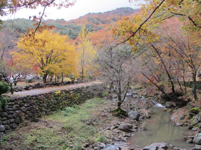 korea-southern-9227