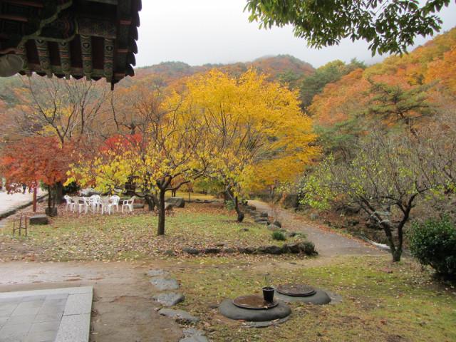 korea-southern-9228