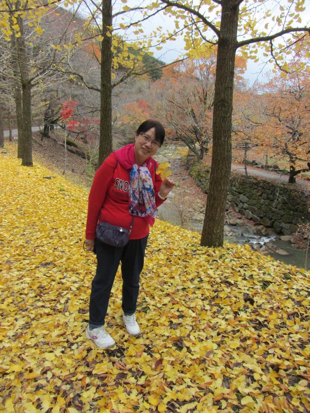 korea-southern-9249
