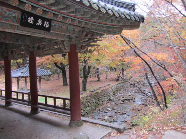korea-southern-9254