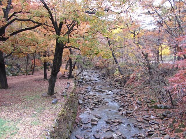 korea-southern-9258