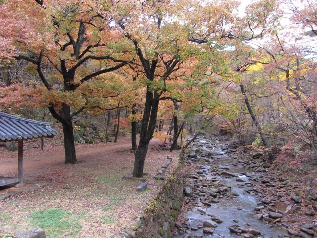 korea-southern-9263
