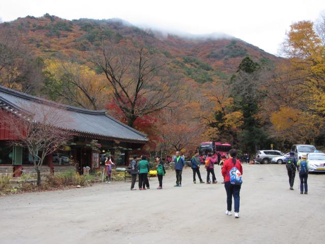 korea-southern-9293