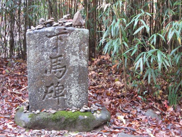 korea-southern-9299