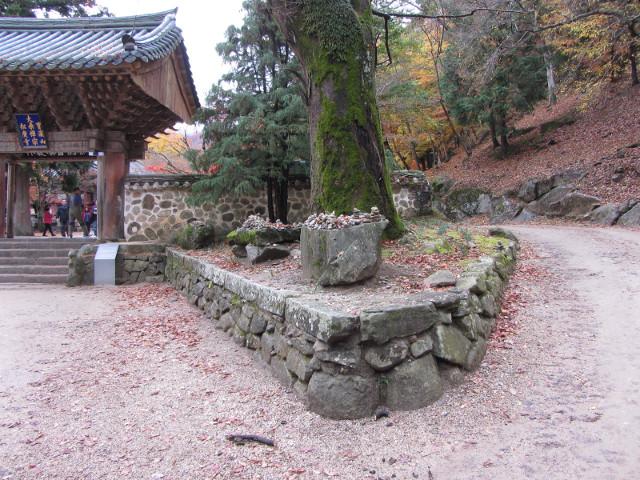 korea-southern-9308