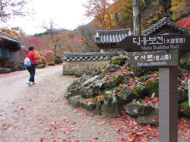 korea-southern-9311
