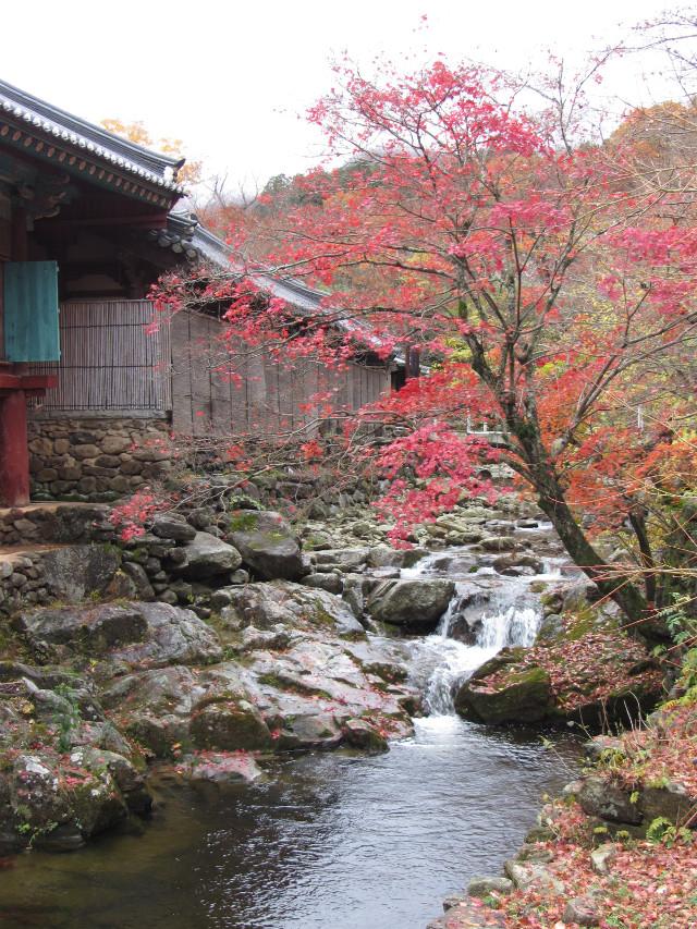 korea-southern-9312