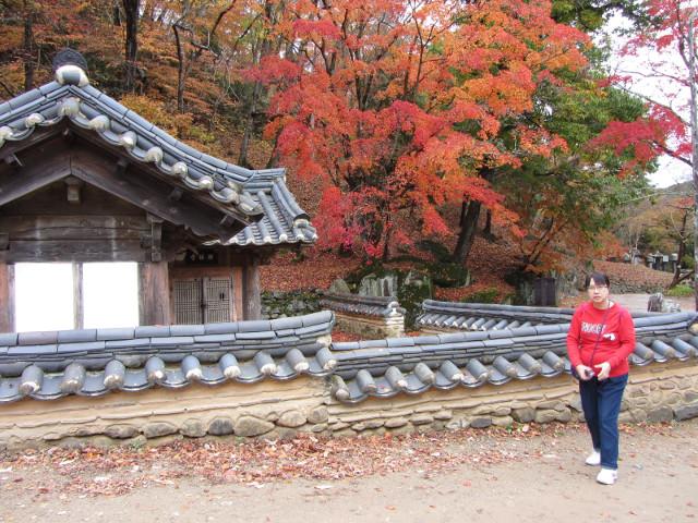 korea-southern-9313
