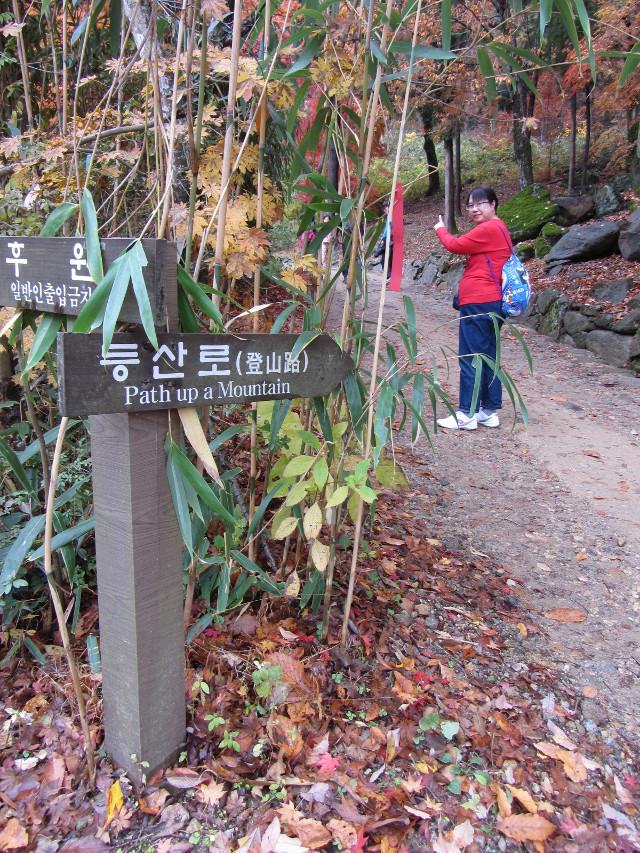 korea-southern-9314