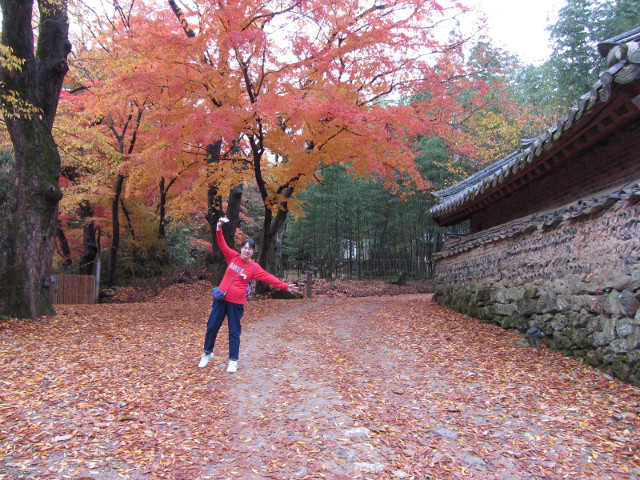 korea-southern-9322