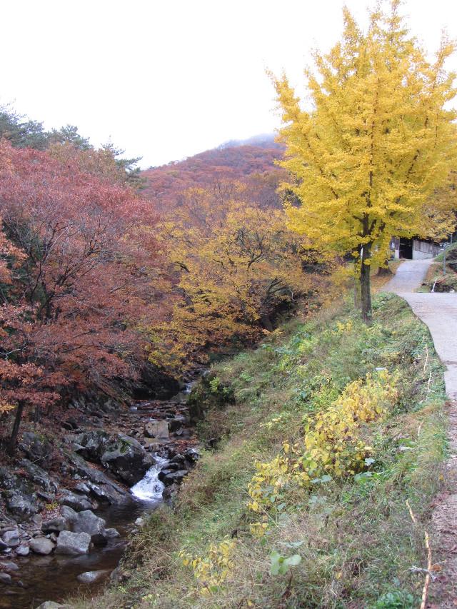 korea-southern-9340