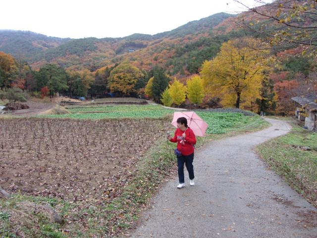 korea-southern-9347