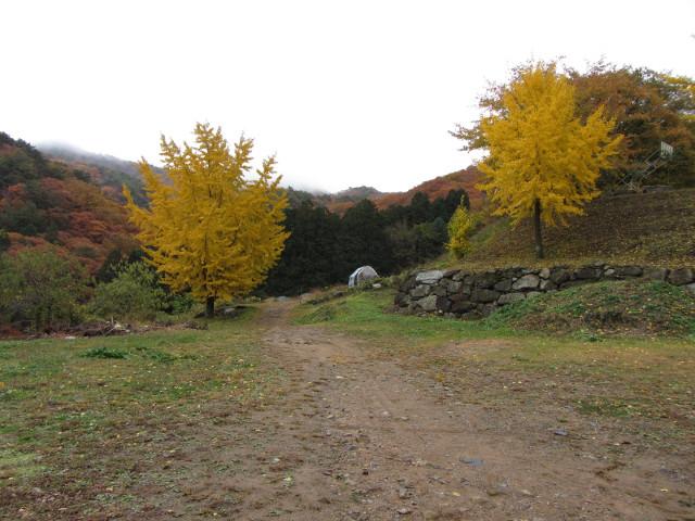 korea-southern-9348