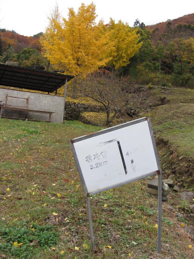 korea-southern-9349