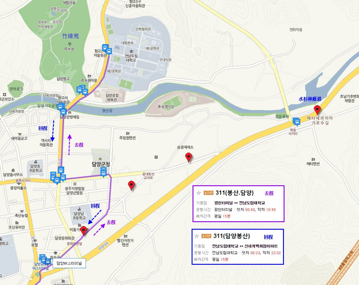 gwangju-to-metasequoia-road-bus-no-311-route-02
