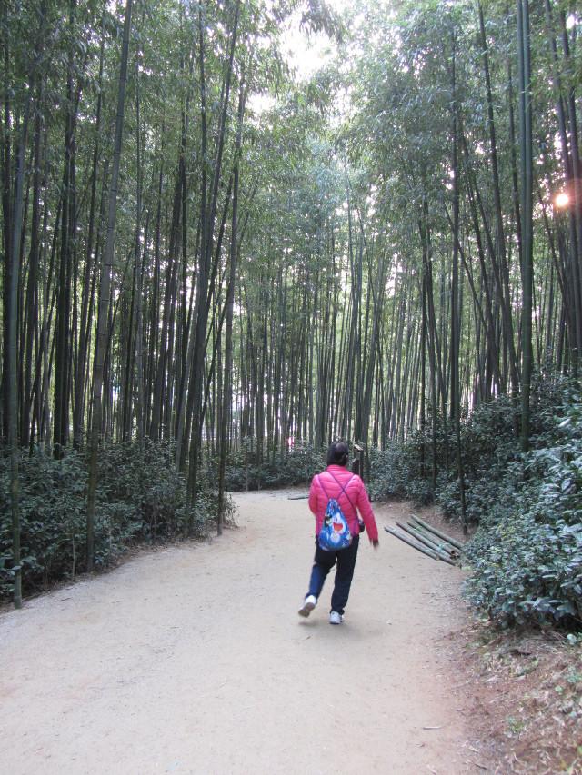 korea-southern-0021