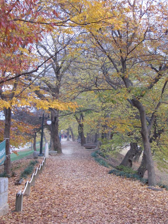 korea-southern-0048