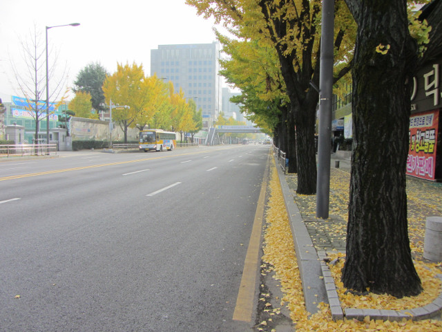 korea-southern-0151