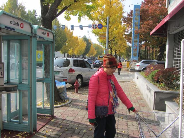 korea-southern-0155