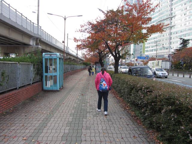 korea-southern-0250