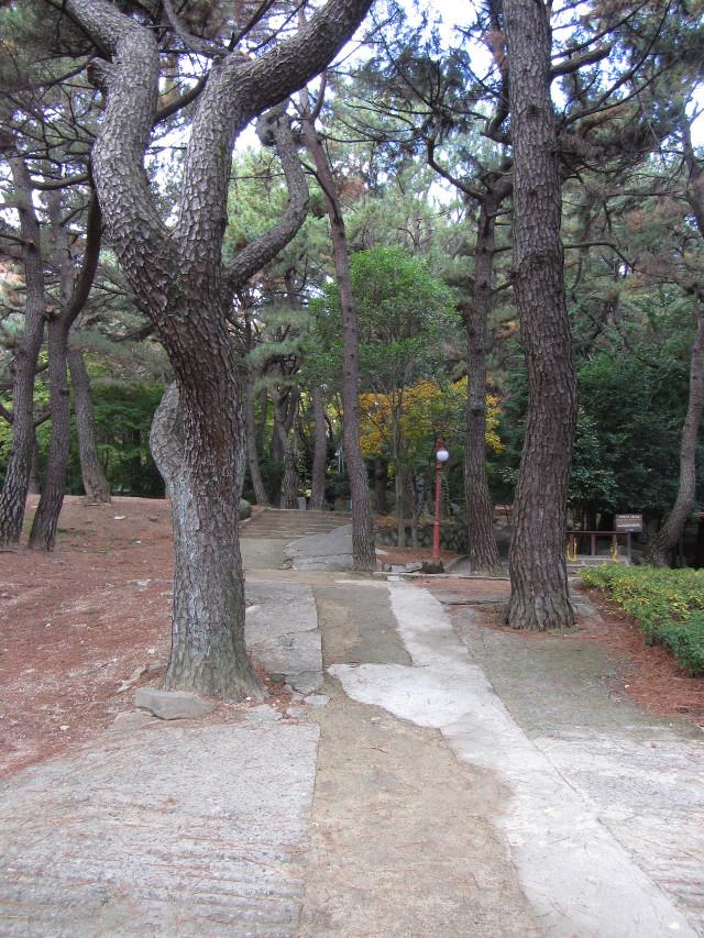 korea-southern-0277
