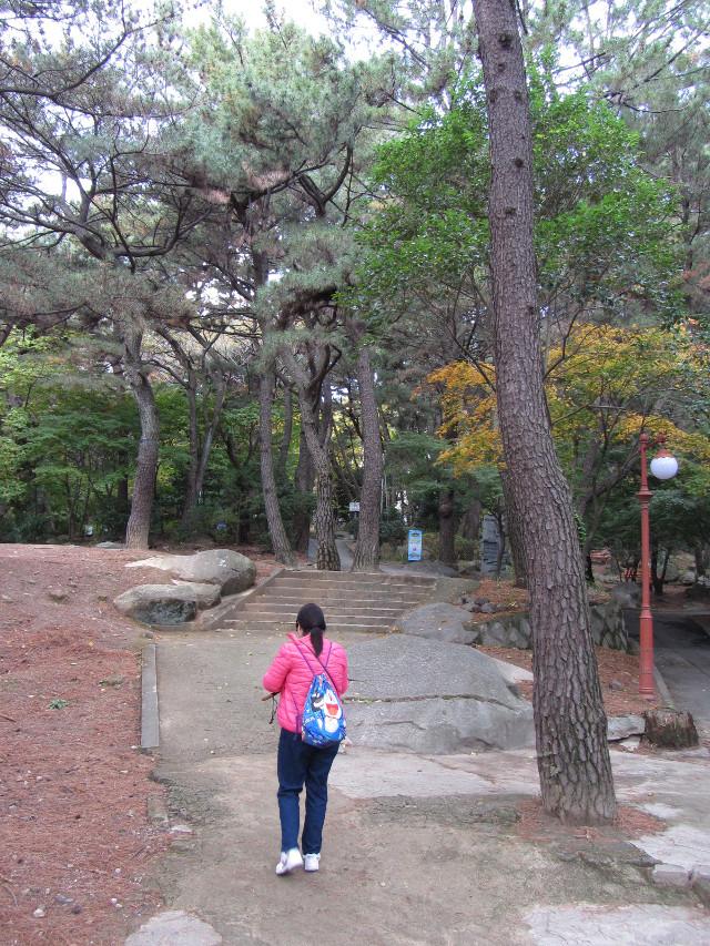 korea-southern-0278