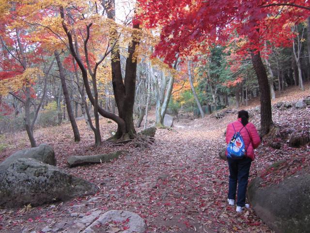 korea-southern-0323