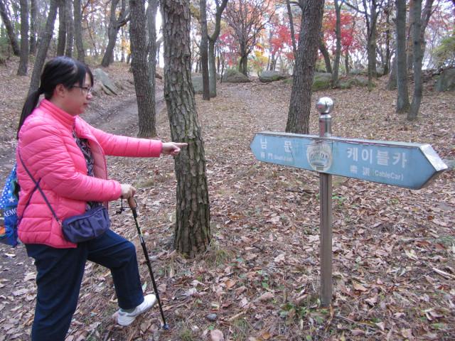 korea-southern-0331