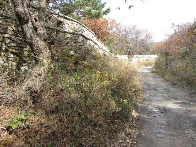 korea-southern-0364