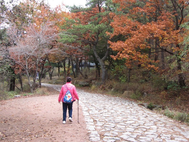 korea-southern-0386