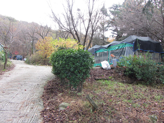 korea-southern-0390